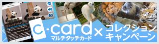 マルチタッチカード×コレクションキャンペーン